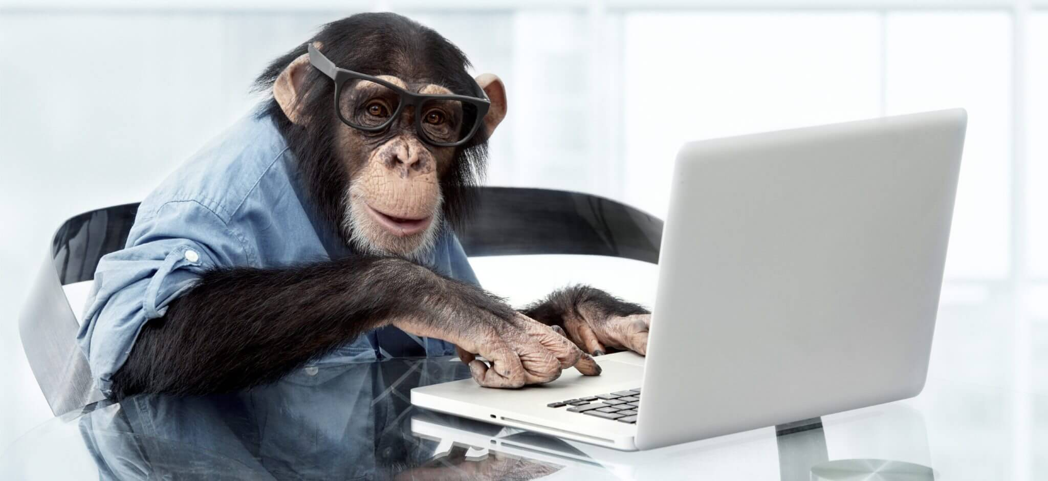 Microsoft Answer Desk, trained monkeys on demand 2