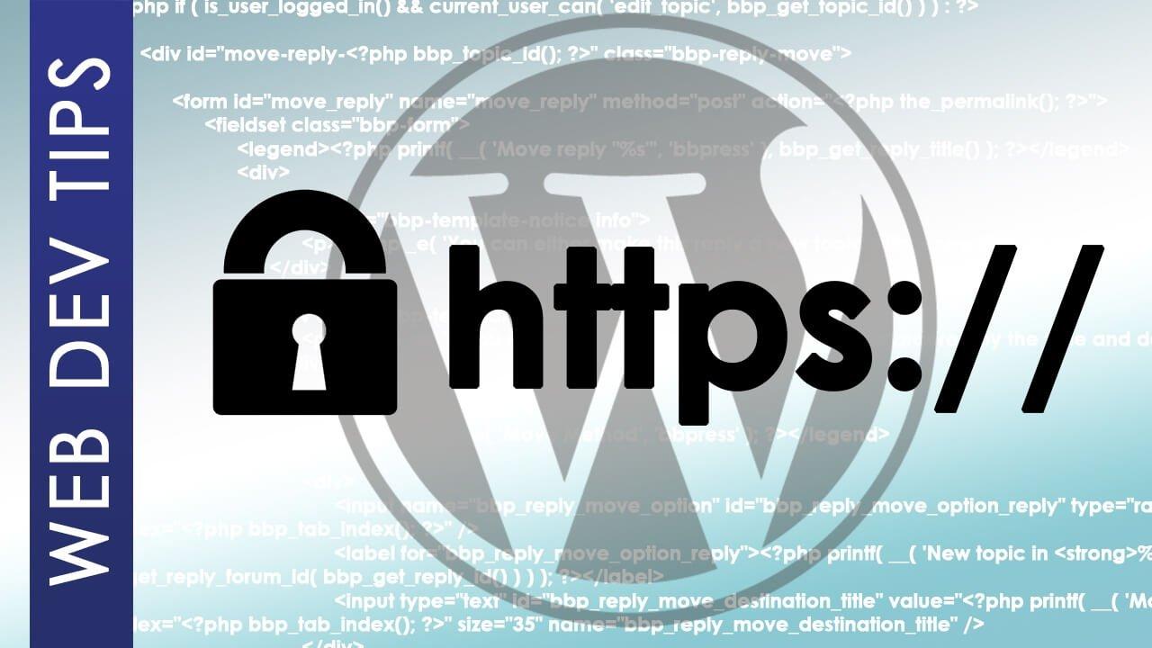 Wordpress ERR_TOO_MANY_REDIRECTS 3 WordPress