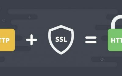 How to properly switch WordPress to HTTPS