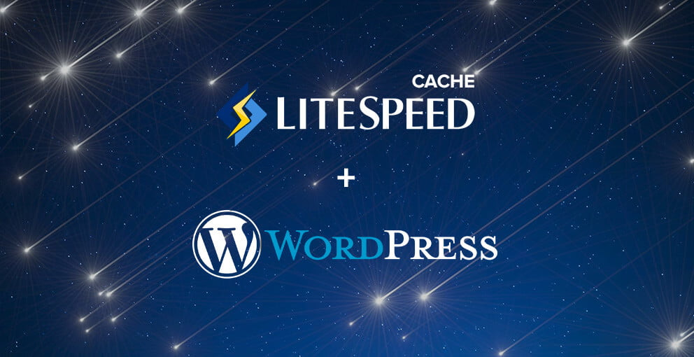 Litespeed Cache issues on WordPress Multisite 1